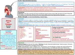 Homoeopathie-Pflanzenheilkunde-Steinheilkunde-Lerntafeln-Farbdrucke-Therapien
