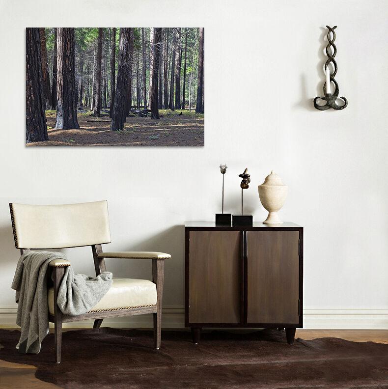 3D Jahrzehnt  Holz 7643  Fototapeten Wandbild BildTapete AJSTORE DE Lemon
