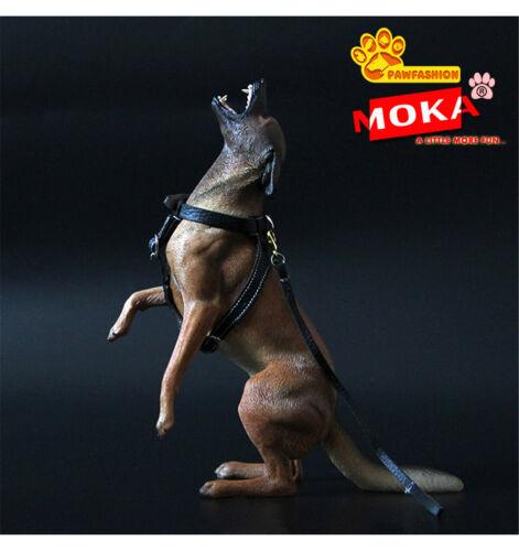 PAWFASHION 1//6 Belgian Malinois Dog Pet Figure Animal Model Collector Toy Gift