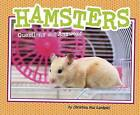 Hamsters: Questions and Answers by Capstone Global Library Ltd (Hardback, 2016)