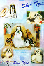 Shih Tzu Dog Gift Present Wrap