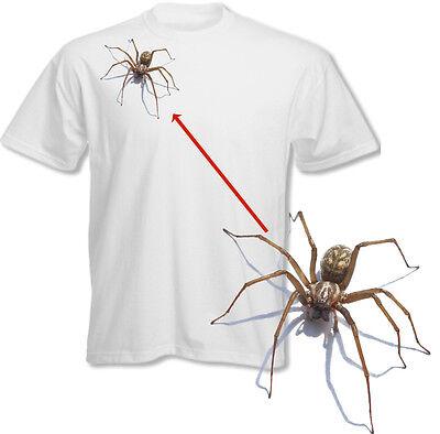 Spider Hanging On Web Halloween T Shirt Scary Tee Arachnophobia Fancy Dress Top