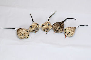 5-CAT-CATCHER-mouse-refill-cat-toy-toys-mice-attachment-Free-shipping-Go-CAT