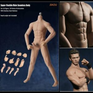 1 6 scale normal skin seamless male figure body w steel skeleton