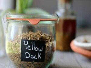 Yellow-Dock-Root-Capsules-100-Organic-Dr-Sebi-NON-GMO-All-Natural