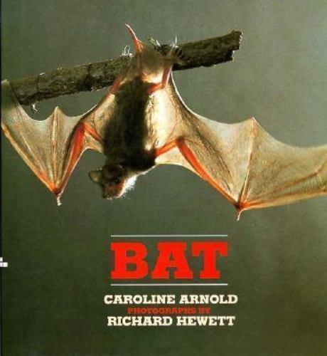 Bat by Arnold, Caroline, Hewett, Richard