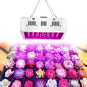 newest 1b385 0c00b Details about 600Watt LED Grow Light Full Spectrum Lamp for Hydros Flower  Plants Hydroponics