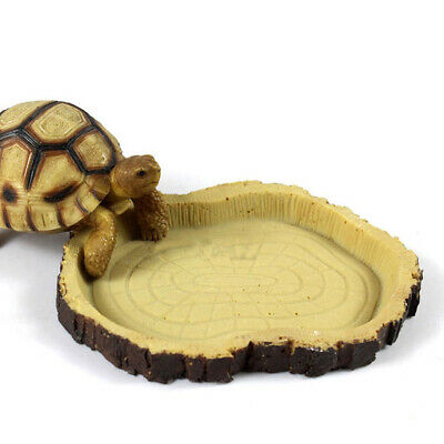 Turtle Snake Reptile Food Dish Long Pattern Feeding Bowl Resin Water Feeder