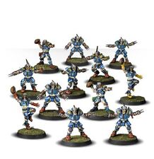 Games Workshop: Blood Bowl New 2016 Human Team x 12 Players