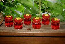 2 MINI HEXAGON HAND HELD 1.5 oz. GLASS - HOMEMADE HUMMINGBIRD NECTAR FEEDERS !