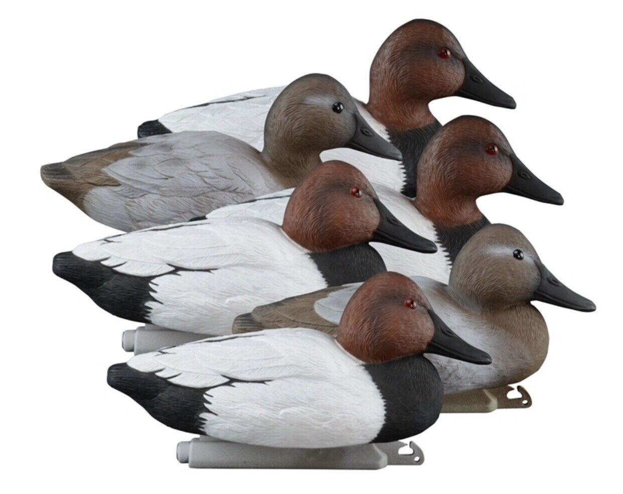 Nuevo-Higdon Señuelos estándar Canvasback Duck Decoy relleno de espuma - 6 Paquete