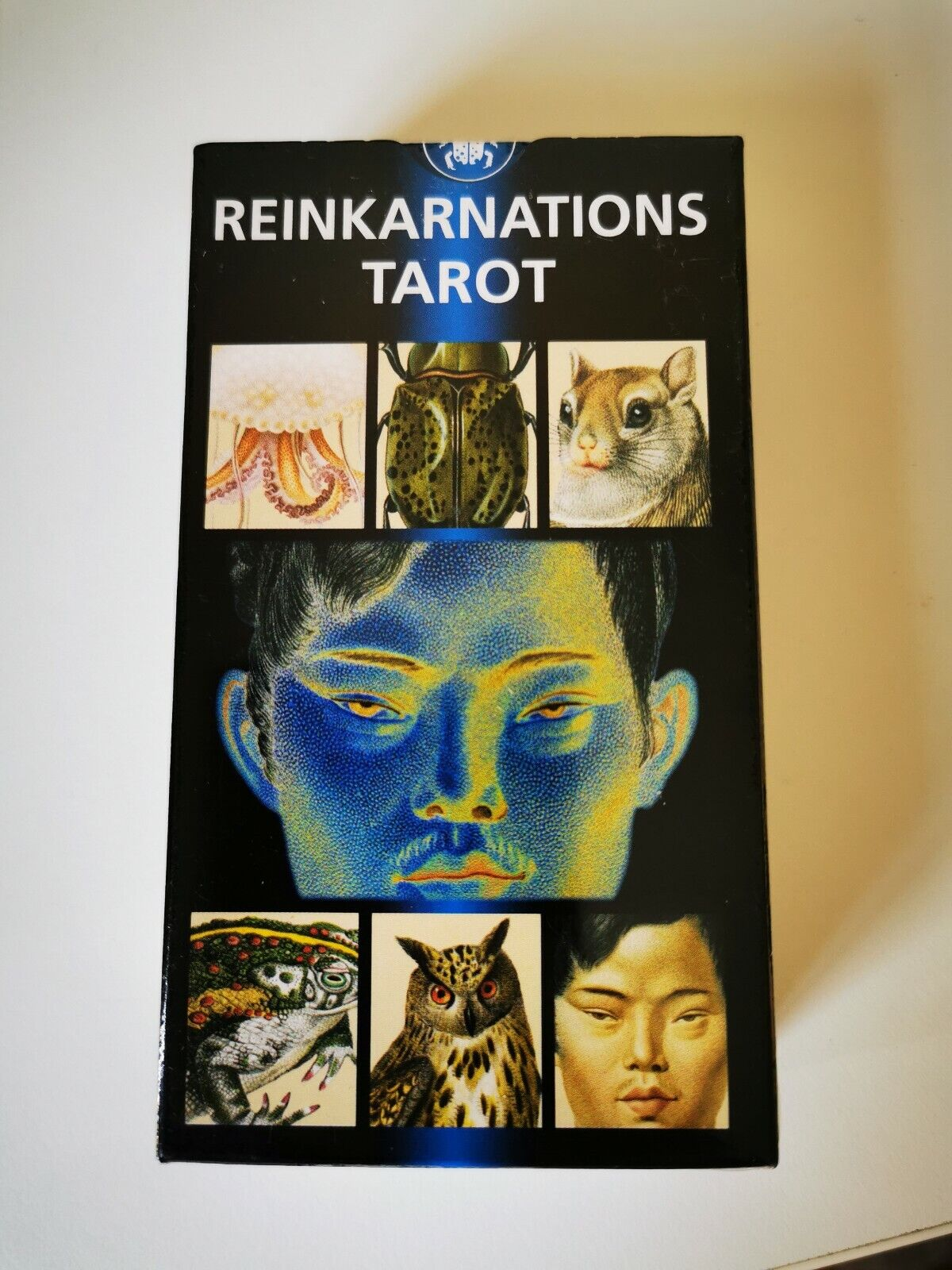 Tared Tared Tared of Reincarnation by Massimiliano Filadgold