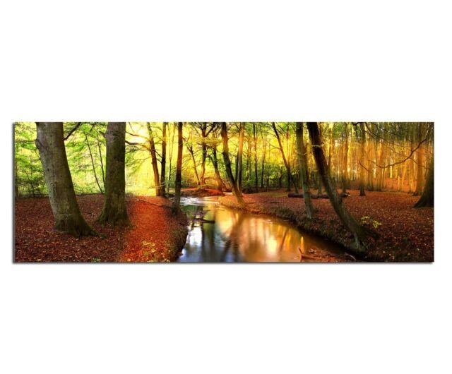 Leinwand Bild Bilder Natur Landschaft Bäume Bach Wasser Panorama150x50cm Nr.59