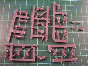 Space-Marine-Sternguard-Veteran-Arms-and-Hands-bits-auction