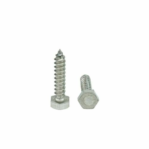 """1//2/"""" Stainless Steel Lag Screws Hex Head Lag Bolts Select Length QTY 25"""