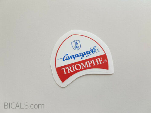 CAMPAGNOLO TRIOMPHE 80s frame bicycle decal sticker silk screen free shipping