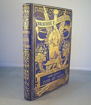 ANDRE SURVILLE / FLEUR DES CHAMPS / RELIURE ROMANTIQUE 1888 HACHETTE