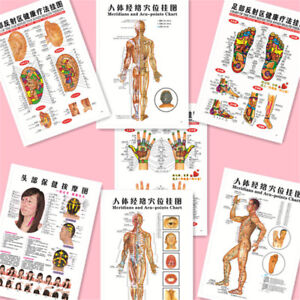 Image Is Loading 7pcs Set English Acupuncture Meridian Acupressure Points Posters
