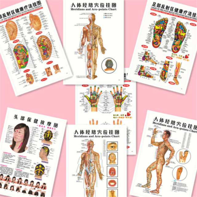 7pcs Set English Acupuncture Meridian Acupressure Points Posters