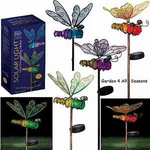 Captivating Image Is Loading BOTTLE Solar Lights Garden Stake Butterfly Amp Dragonfly