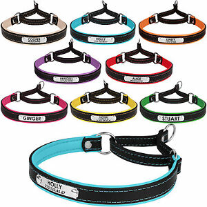 Leather-Dog-Collar-Martingale-Choke-Collars-for-Dogs-Personalized-ID-Tag