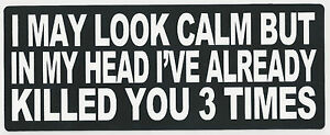 I-MAY-LOOK-CALM-BUT-IN-MY-HEAD-I-039-VE-ALREADY-KILLED-YOU-3-TIMES-BUMPER-STICKER