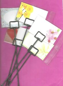 Pack 100 White Cardettes Florists Card Holders