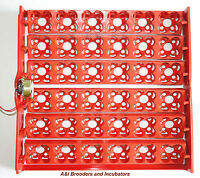 Automatic 144 Quail Egg Turner Tray & Ac Motor 110volt Or 220volt Brand