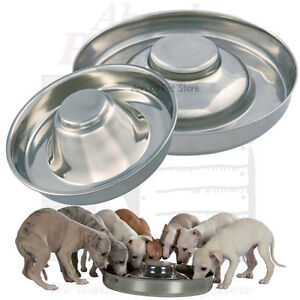 Puppy Weaning Bowls Stainless Steel Low Rim Elevated ...