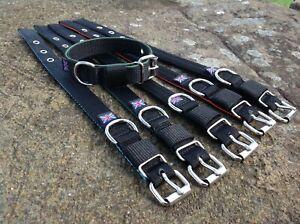 ST16-Webbing-Dog-Collar-amp-Lead-Set-Terrier-Lurcher-Greyhound-Gundog-Spaniel