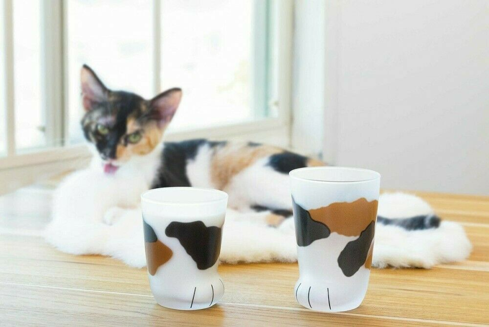 Aderia Cat Foot Glass Tumbler 300mL Kitty Cute Japan Made Coconeco Calico Model