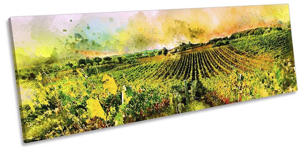 Grapevines Landscape Modern Bild PANORAMA CANVAS Wand Kunst Drucken Grün