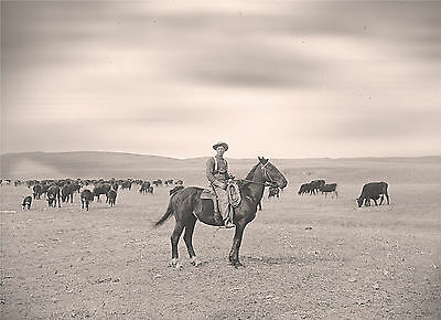 "1889 Photo, Cowboy on Nebraska Ranch, Old Western, Horseback, 20""x16"" CANVAS"