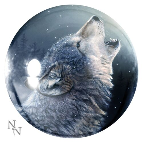 Glass PAPERWEIGHT Hare Pagan Wiccan NEW Fairy Wolf Unicorn Black Cat