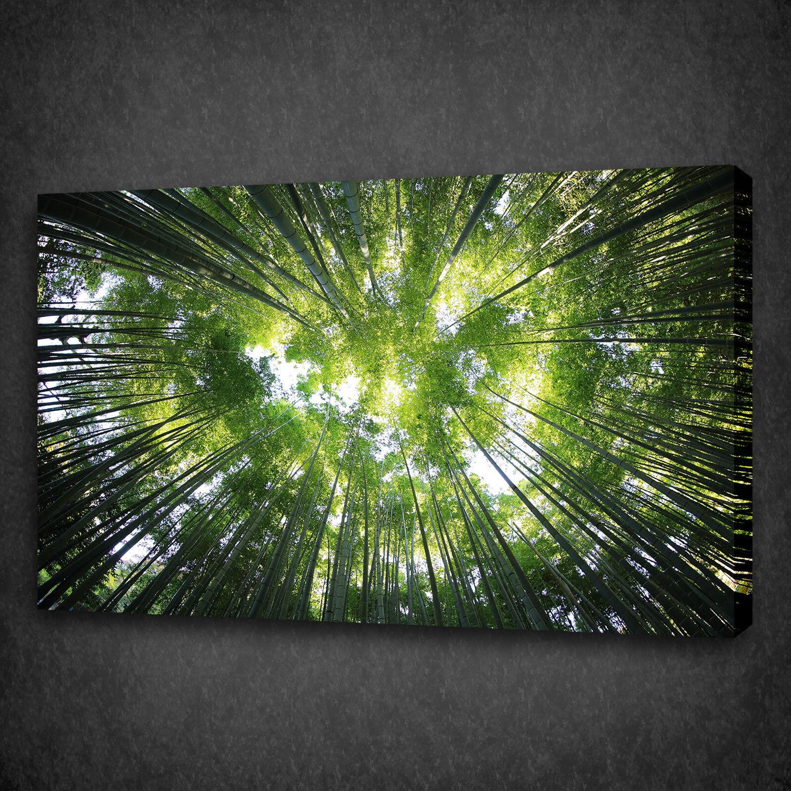 BELLA FORESTA verde ALBERI Sky Box montato in Tela Stampa Wall Art Picture Foto