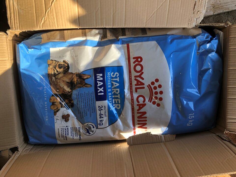 Hundefoder, Royal Canin Maxi Starter