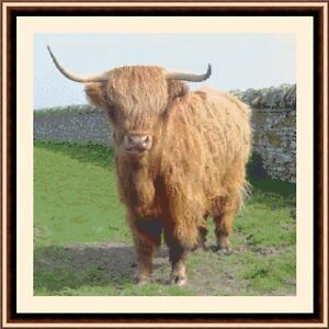 Highland-Cow-04-CROSS-STITCH-KIT