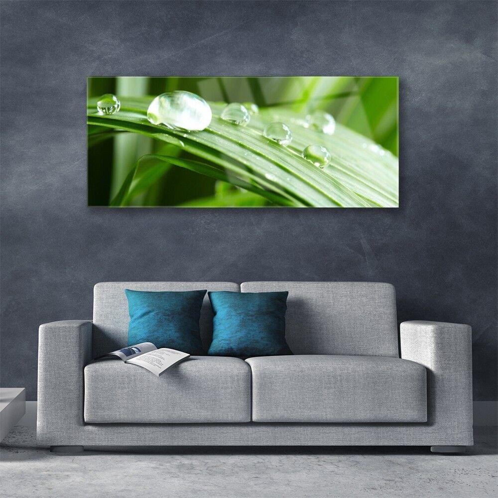 Impression sur verre acrylique Rosée Image tableau 125x50 Floral Feuille Rosée acrylique Gouttes 96814d