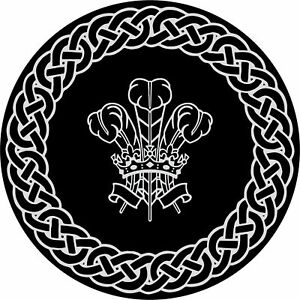 4x4-Spare-Wheel-Cover-4-x-4-Camper-Graphic-Sticker-Celtic-Knot-Welsh-Feather-114