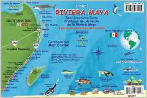Riviera Maya Mexico Map Reef Creatures Guide Laminated Fish Card