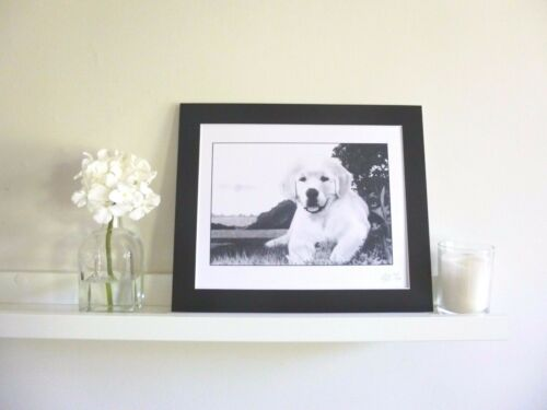 GOLDEN RETRIEVER PUPPY Pencil Drawing Print Great Gift Present For Dog Lover