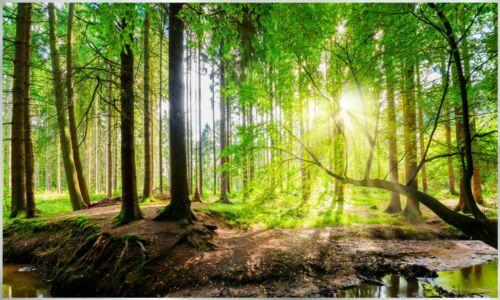 67 Bildheizung Infrarotheizung Ultra-HD Bilder 350-1200Watt InfrarotPro® GLAS