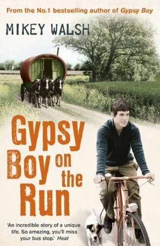 1 of 1 - Gypsy Boy on the Run By Mikey Walsh. 9781444720228