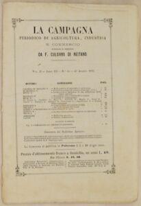 LA-CAMPAGNA-AGRICOLTURA-20-AGOSTO-1873-CANTONE-TICINO-MEDICINA-VETERINARIA