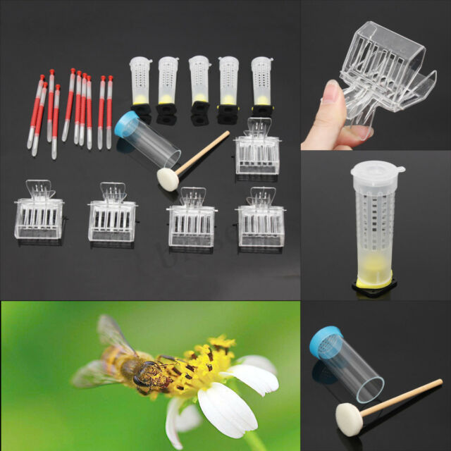 Stainless Steel Beekeeping Queen Bee Catcher Cage Bees Marking Catchers Clips a