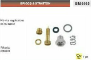 Carburateur A Cuve BRUMAR Briggs /& Stratton BM013952 Moteurs 5 HP