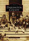 Darlington County by Mary Anne Hamblen (Paperback / softback, 2008)