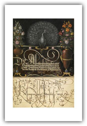 "/""Flower Arrangements Mira Calligraphiae Monumenta Peacock/"" — Fine Art Print"
