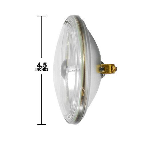 CHAUVET 4515 30w 6v PAR36 Spotlamp light bulb