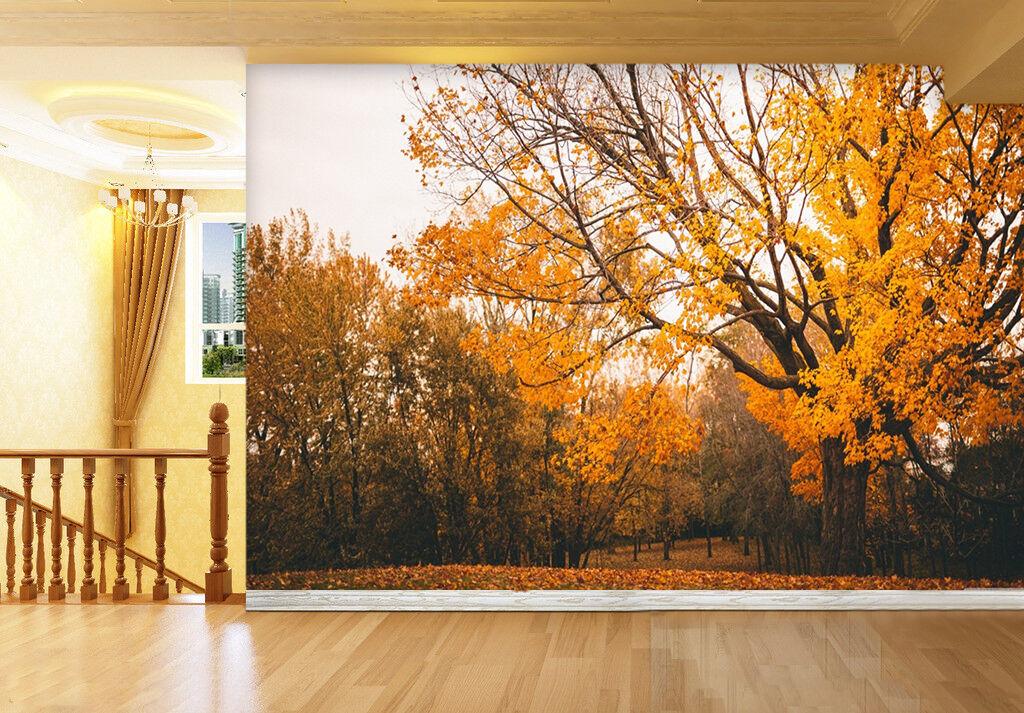 3D Gelb tree 8778 Wall Paper Print Wall Decal Deco Indoor Wall Murals